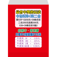 紅包袋背面-B7468